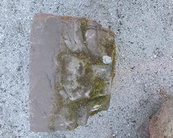 Socle de statue sculpté en grès rose 18ème
